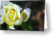 Tightly Woven Greeting Card
