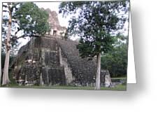 Tikal And Its Pyramids Greeting Card