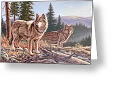 Timber Ridge Greeting Card