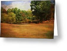 Timbers Pond Greeting Card by Jai Johnson