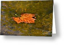 Time Floating Away Greeting Card