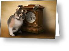 Time For Cat And Mouse Greeting Card