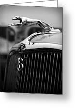 Timmis-ford V8 Greyhound Hood Ornament Greeting Card
