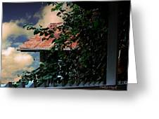 Tin Roof And Vines Greeting Card
