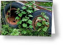 Tires And Ivy Greeting Card