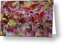 Tn Fall Water Greeting Card