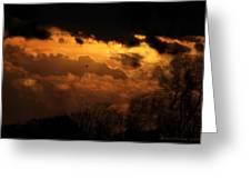 Tn Sunset Nov-11 Greeting Card
