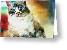 Toby The Cat Greeting Card