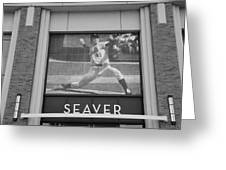Tom Seaver 41 In Black And White Greeting Card