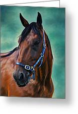 Tommy - Horse Painting Greeting Card