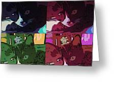 Toonces In Quad Greeting Card