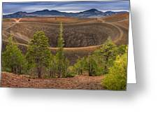 Top Of Cinder Cone Greeting Card