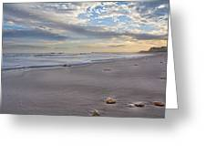 Topsail Living  Greeting Card