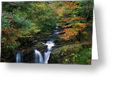 Torc Waterfall, Ireland,co Kerry Greeting Card