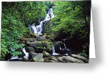 Torc Waterfall, Killarney National Greeting Card