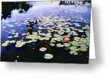 Torch River Water Lilies 3.0 Greeting Card