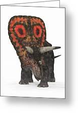 Torosaurus Dinosaur Greeting Card