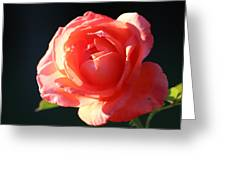 Touch Of Fragrance. Greeting Card