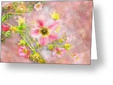 Touch Of Spring Greeting Card