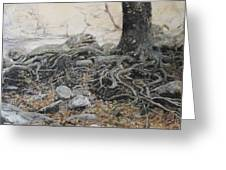 Tough Tree Greeting Card