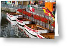 Tour Boats Greeting Card