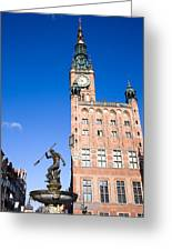 Town Hall And Neptune Fountain In Gdansk Greeting Card
