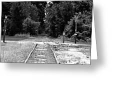 Abandoned Rails Greeting Card