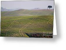 Tracks On The Field Greeting Card