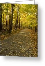 Trail Scene Autumn Abstract 1 Greeting Card