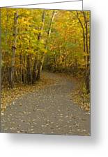 Trail Scene Autumn Abstract 3 Greeting Card