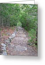 Trail To Peace Greeting Card
