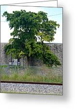 Train Tree Greeting Card