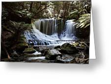 Tranquillity 05 Greeting Card by David Barringhaus