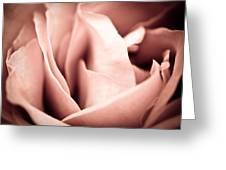 Transfigured Rose Greeting Card