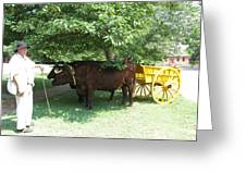 Transportation. Colonial Williamsburg. Virginia Greeting Card