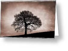 Tree Against A Stormy Sky Greeting Card