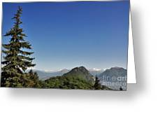 Tree And A Panoramic View Greeting Card