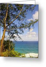 Tree And A Tropical Beach Greeting Card