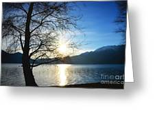 Tree And Lake Greeting Card