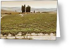 Tree Circle - Tuscany  Greeting Card
