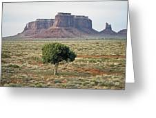 Tree In Monument Valley Greeting Card