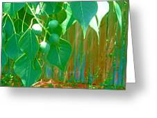 Tree Leaves Greeting Card by Juliana  Blessington