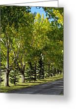 Tree Mix Greeting Card
