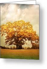 Tree Of Joy Greeting Card by Jai Johnson