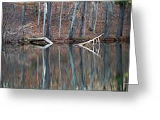 Tree Reflection Greeting Card