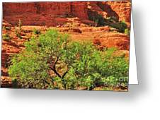 Tree Set Against Red Cliffs Greeting Card