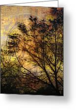Tree Stamp Greeting Card