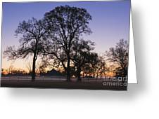 Trees And Fence In The Mist Greeting Card by Jeremy Woodhouse