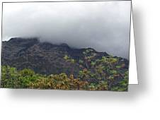 Trees And Leaves At The Base Of A Mountain With Clouds And Mist Covering The Top Greeting Card