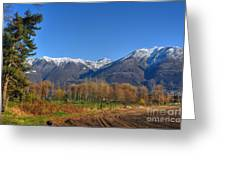 Trees And Mountain Greeting Card